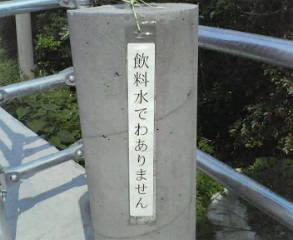 200805211747000.jpg